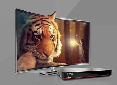 The Leader in HD TV - Fort Smith, Arkansas - WOW-World of Wireless - DISH Authorized Retailer
